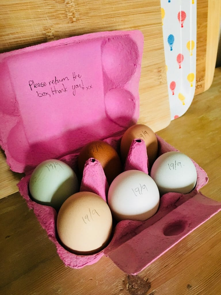 Fresh eggs from Blue Barn Country Retreat